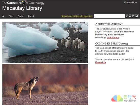 全球最大的自然声音档案馆:Macaulay Library